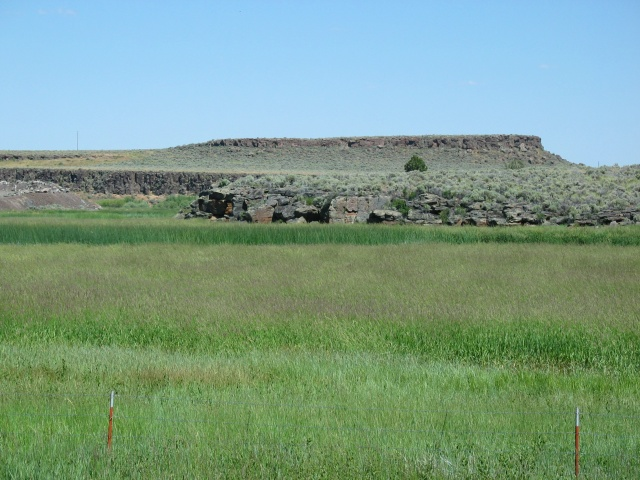 Lovely lava formations and lush, long grass in the Malheur National Wildlife Refuge.