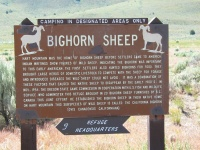 Not only Pronghorn Antelope, but also Bighhorn Sheep. We saw some antelope, but no sheep.